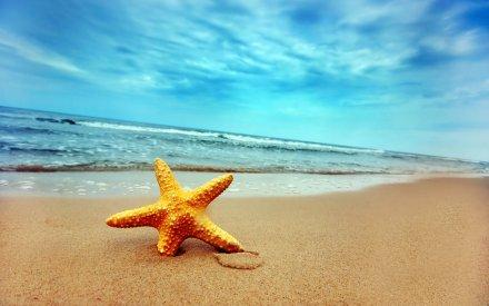 summer-beach[1]